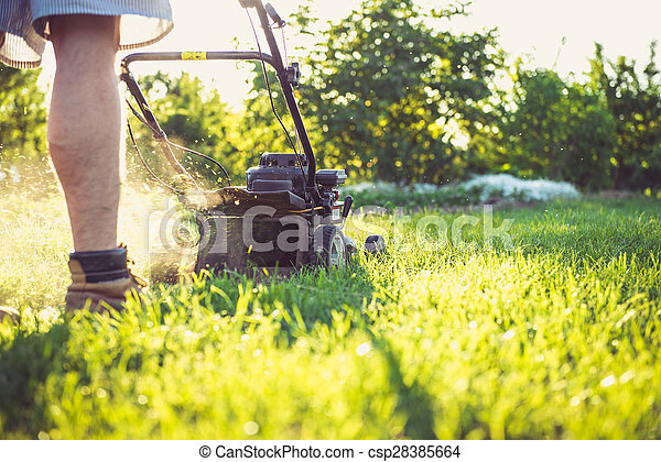 Young man mowing the grass - csp28385664