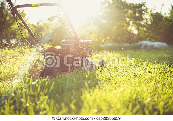Young man mowing the grass - csp28385659