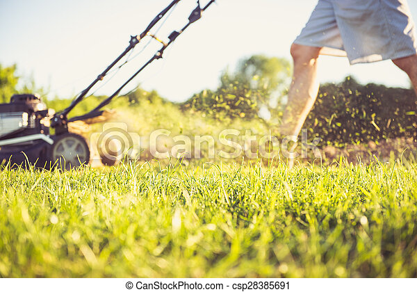 Young man mowing the grass - csp28385691