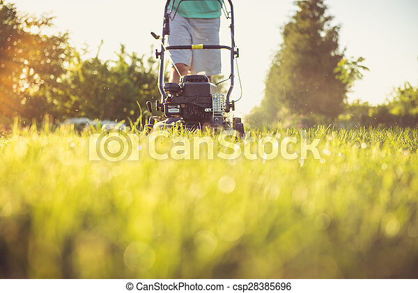 Young man mowing the grass - csp28385696