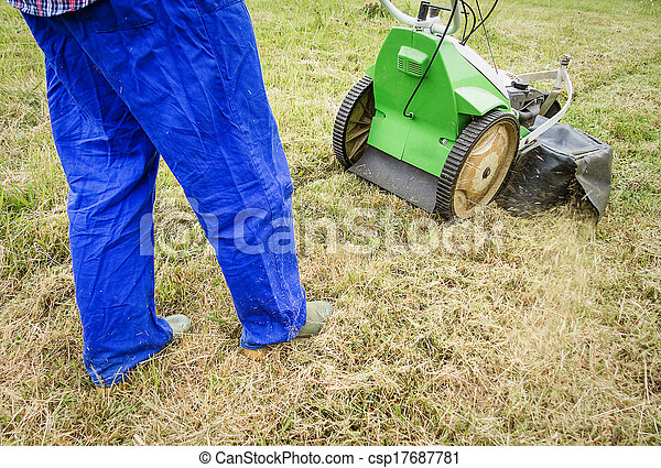 Young man mowing the lawn with a lawnmower - csp17687781