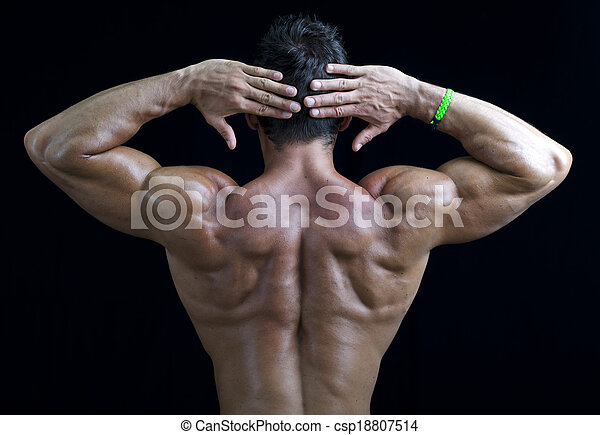 Young muscular bodybuilder\'s back, hands behind his head. on black ...