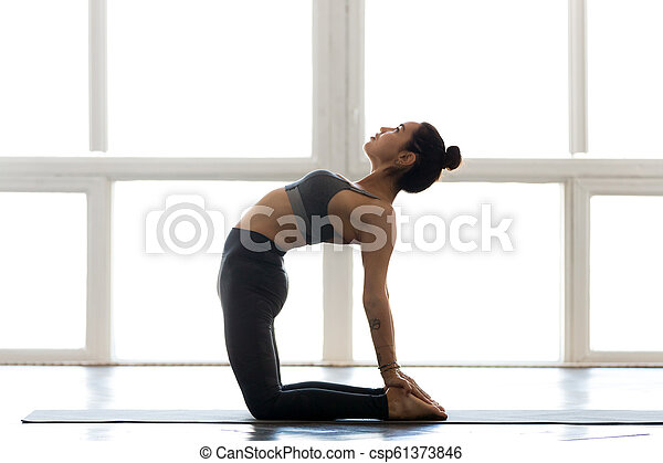 young sporty attractive woman practicing yoga doing