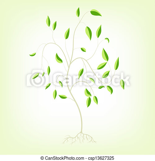 Young Tree Clipart