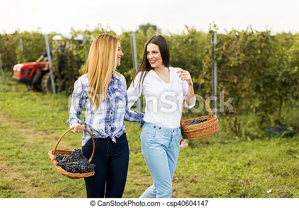 Young woman in vineyard - csp40604147