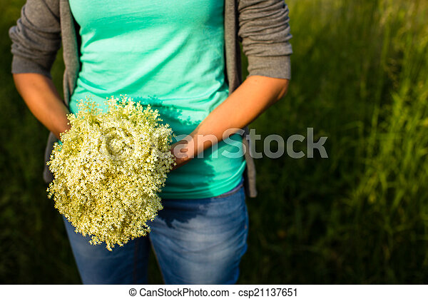 Young woman picking elderflower to make an infusion at home - csp21137651