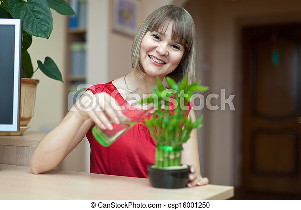 Young woman with lucky bamboo plant   - csp16001250
