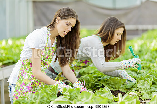Young women in the garden - csp19808353