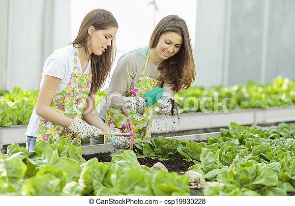 Young women in the garden - csp19930228