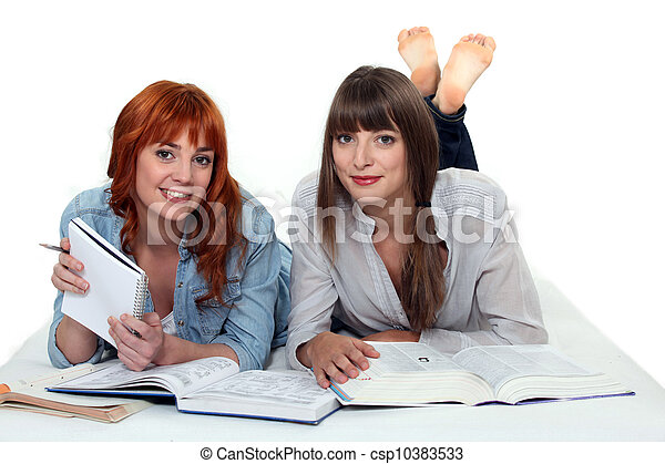 Young women studying books - csp10383533