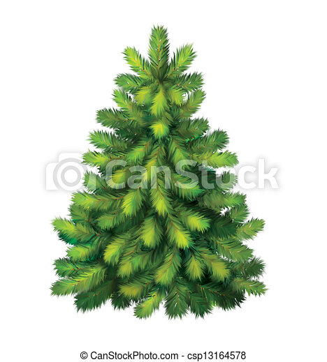 yung green pine tree christmas tree stock illustration