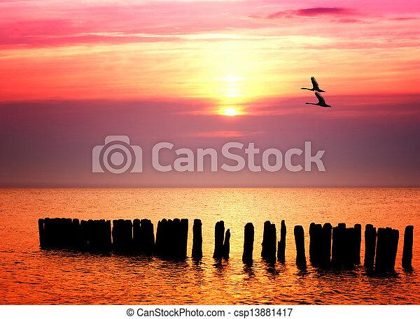 západ slunce oceán - csp13881417