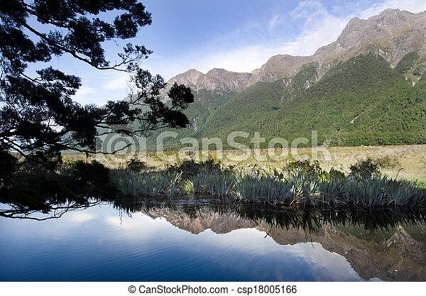 zélande, nouveau, fiordland, - - csp18005166