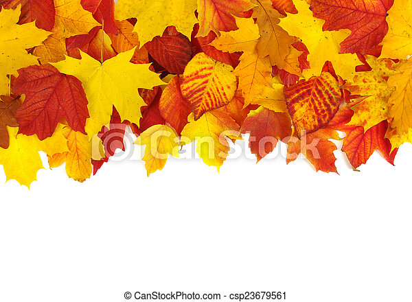 zöld, ősz - csp23679561