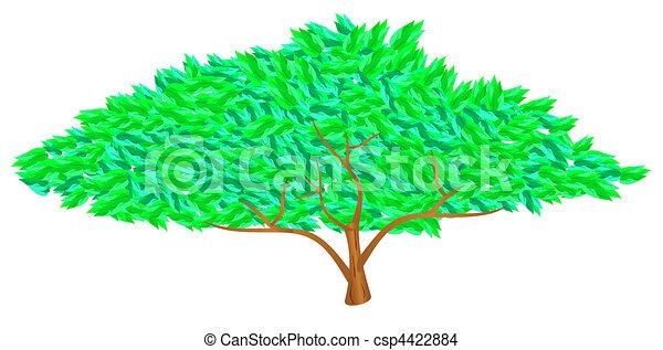 zöld fa - csp4422884