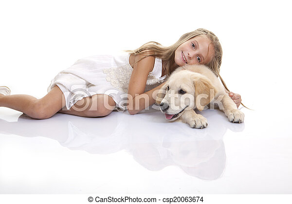złoty labrador, pies - csp20063674