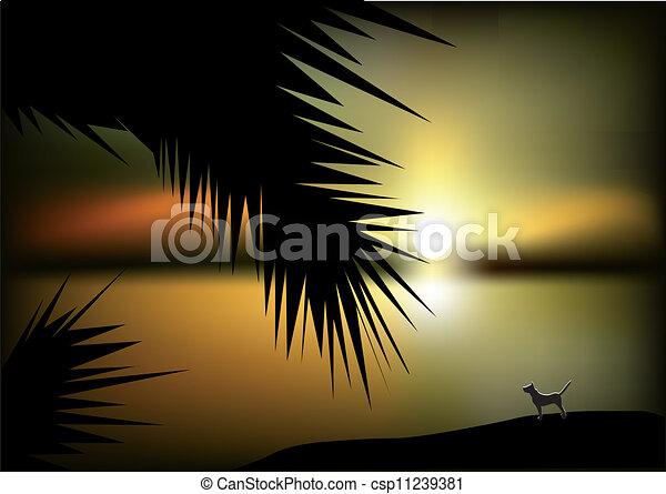 zachód słońca, morze - csp11239381