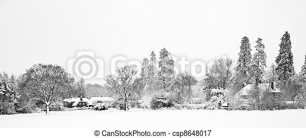zagroda, śnieg, czarnoskóry, biały, winterr, krajobraz - csp8648017