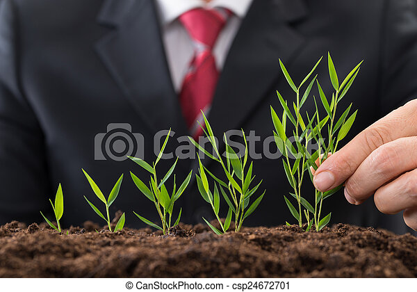 zakenman, sapling, aanplant - csp24672701