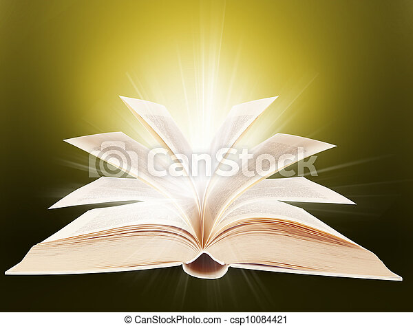 zakon, książka - csp10084421
