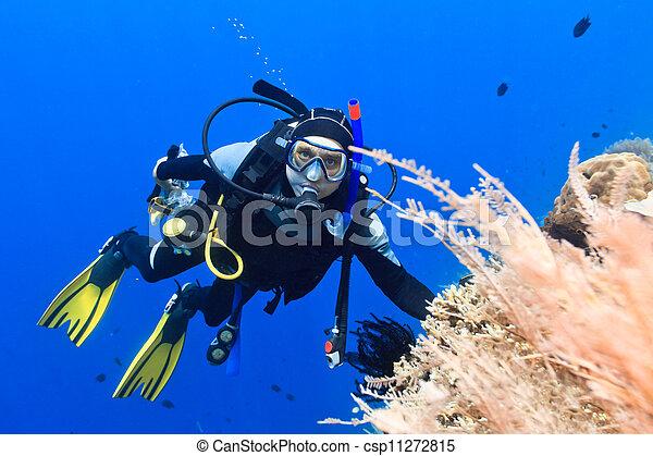 Buzo de buceo - csp11272815
