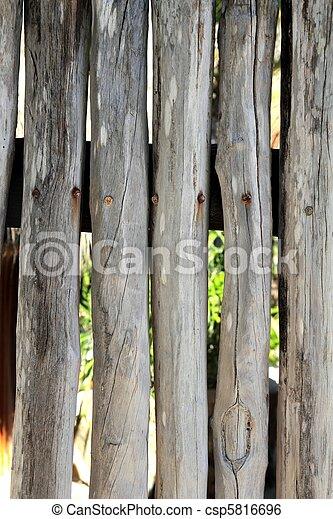 Zaun Wand Maya Tropische Holz Stock Stamm Weisses