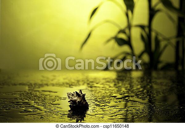 zdrój, życie, wciąż, bambus - csp11650148