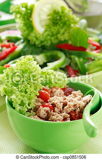 zdrowe jadło - csp0851506