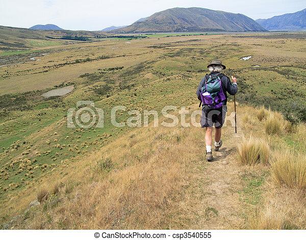 zealand, excursionista, ambulante, colinas, nuevo - csp3540555