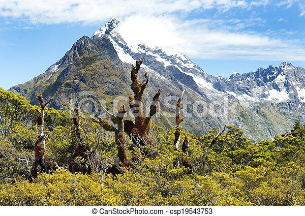 Magníficos paisajes de Nueva Zelanda - csp19543753