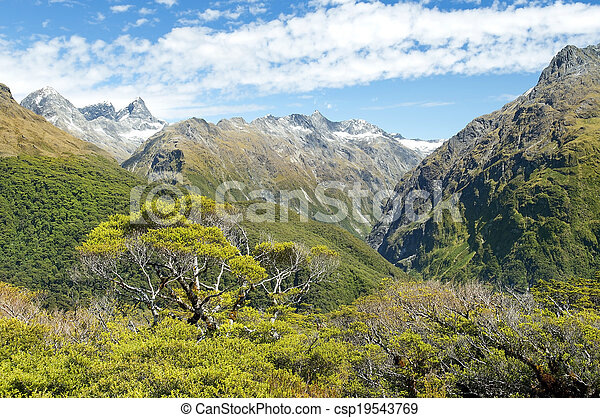 Magníficos paisajes de Nueva Zelanda - csp19543769