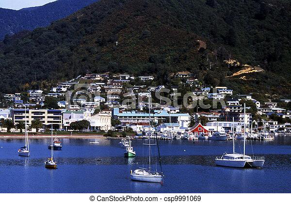 Picton, nuevo Zealand - csp9991069