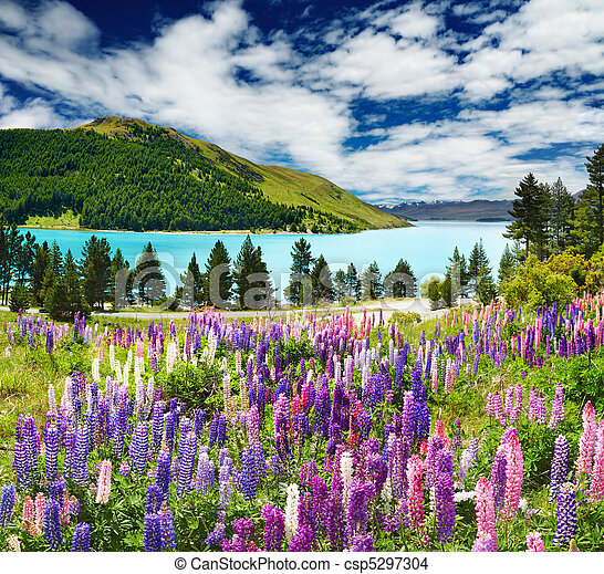 Lago Tekapo, nuevo Zealand - csp5297304