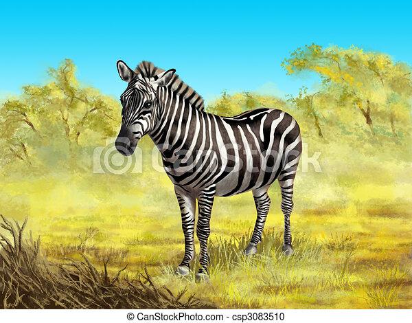 Zebra - csp3083510