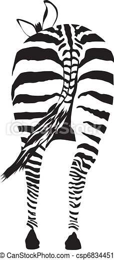 Zebra from behind - csp6834451