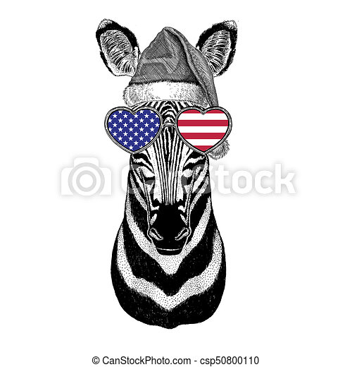 b800f27ad36e2 Zebra Horse Wearing Christmas Hat New Year Eve Merry Christmas And Happy  New Year Zoo Life Holidays
