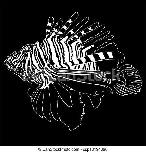 Zebra Lionfish - csp18194098