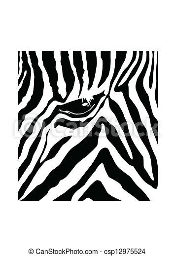 zebra pattern vector illustration search clipart drawings and rh canstockphoto com vector zebra pattern for illustrator zebra stripe pattern vector