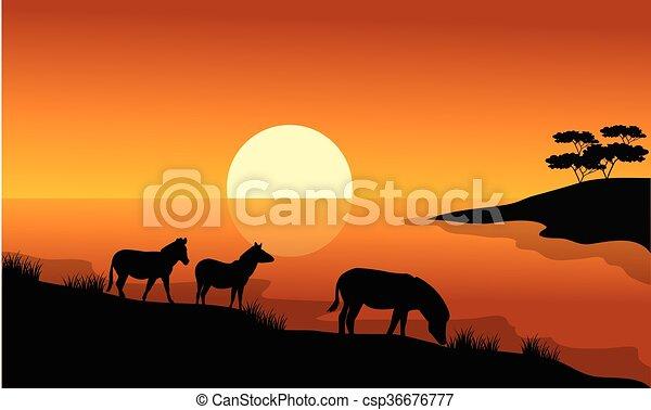 Zebra silhouette in riverbank - csp36676777