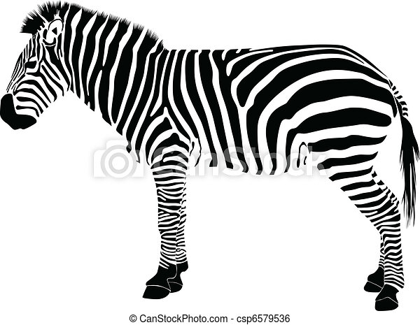 zebra silhouette vector clip art vector search drawings and rh canstockphoto com zebra vector pattern vector zebra