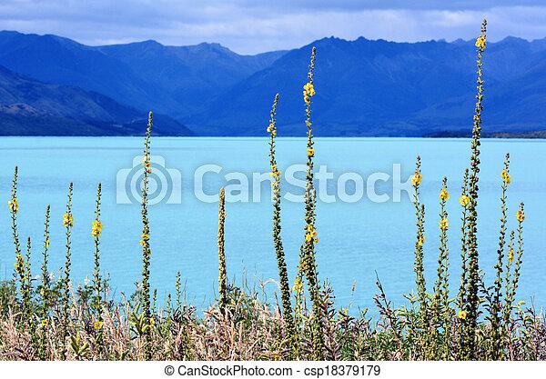 zeeland, meer, nz, wakatipu, nieuw, nzl - csp18379179