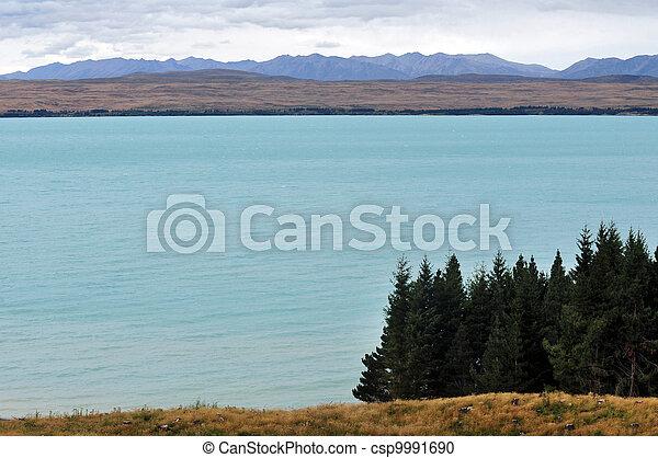 zeeland, tekapo, meer, nieuw - csp9991690