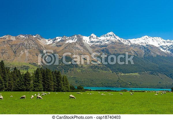 zelândia, novo, montanhas - csp18740403
