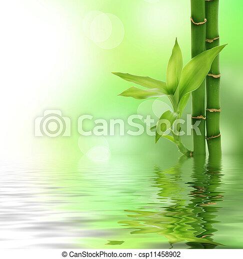 zen, bambou - csp11458902
