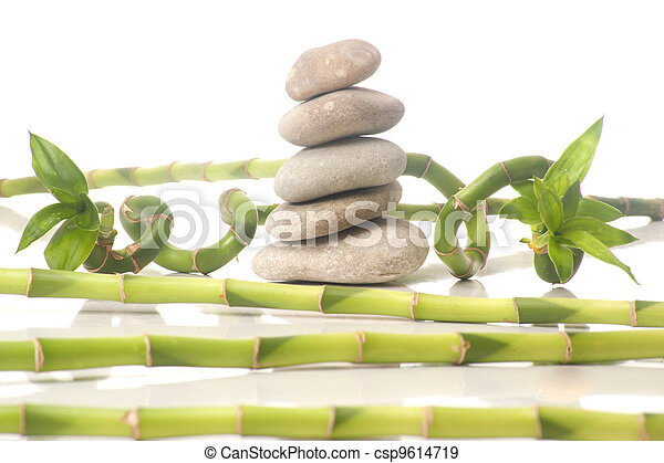 zen, composition - csp9614719