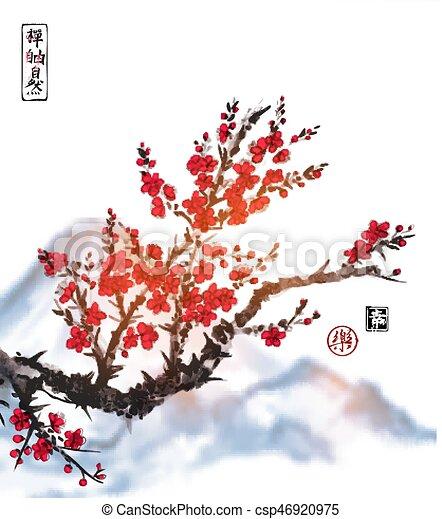 Zen fiore ciliegia contiene albero libert fondo for Sakura albero