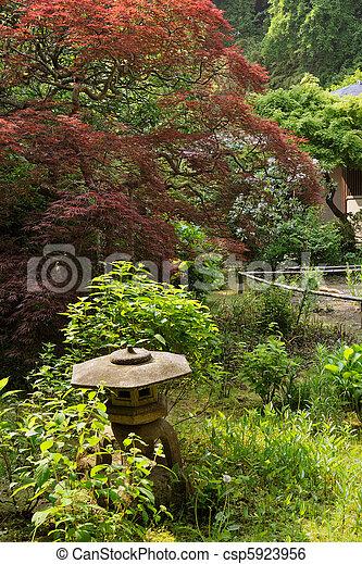 Zen Garten Steingarten Baum Zen Japanisches Roter Hintergrund