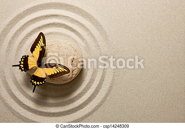 Zen stone with butterfly - csp14248309