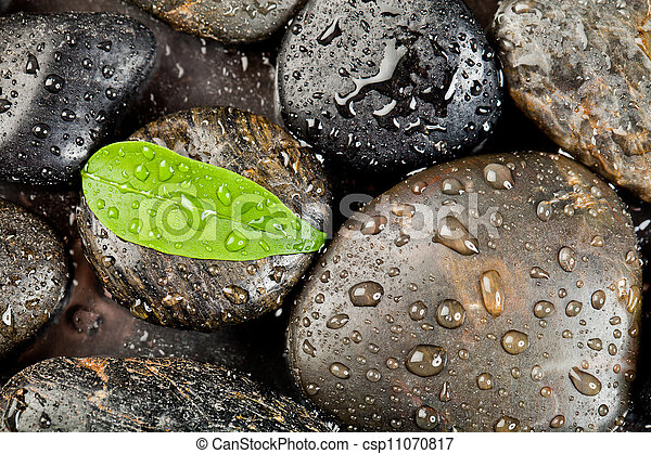 zen stones and freshplant with water drops - csp11070817