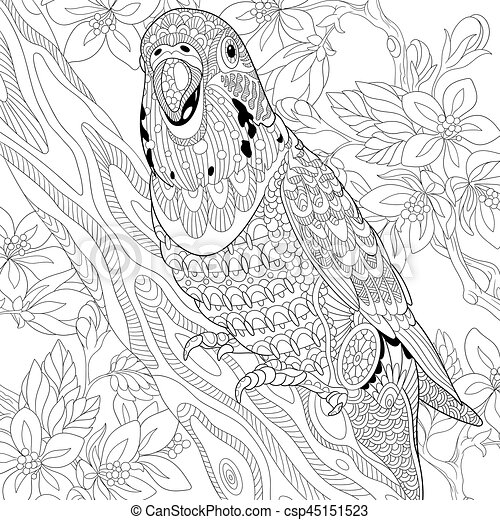 parakeet coloring pages.html